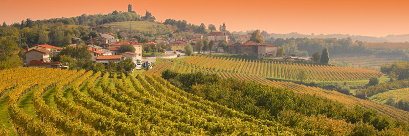 tours_cooking_and_wine_tasting_holiday_in_slovenia_1.jpg